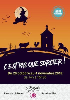 BN-2018-10-flyer A5 pas sorcier_Page_1