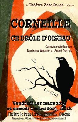 Corneille--ce-drole-d-oiseau
