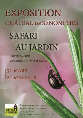 Safari au Jardin expo Château de Senonches
