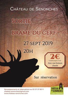 Sortie brame du cerf_3_château de Senonches.indd
