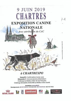 affiche-exposition-canine