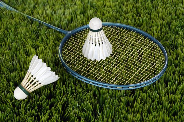 badminton-grass-racket-115016