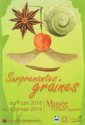 Exposition - Surprenantes graines