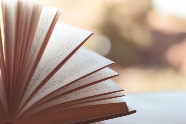 livre---photo-libre-de-droit-7