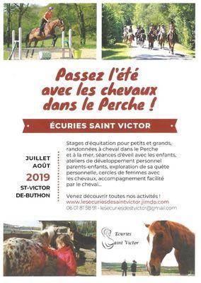 saint-victor-apres-midi-decouverte-chevaux