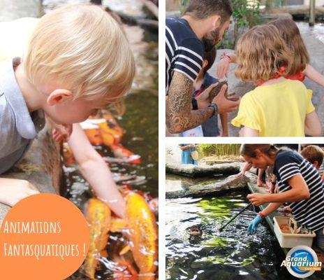 Aquarium_de_Saint_Malo_animations_vacances_printemps