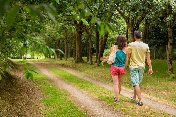 Bois de Saint Ronan - Plozevet - Pays Bigouden-4