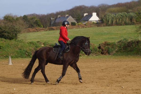 Kurun equitation -PSG- 3
