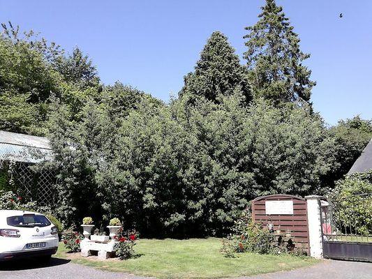 auberge-basque-jardin