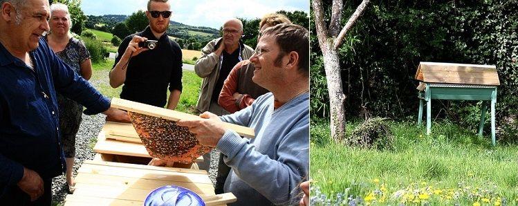 apiculture-lapatureeschenes-2019