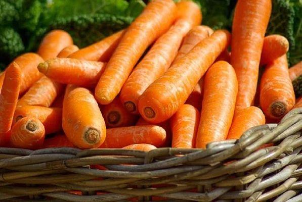 carrots-673184__340