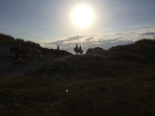 centre-equestre-le-Trefle-Ploneour-Lanvern-Pays-Bigouden-5