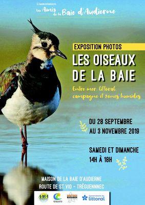 expo-oiseaux-2019