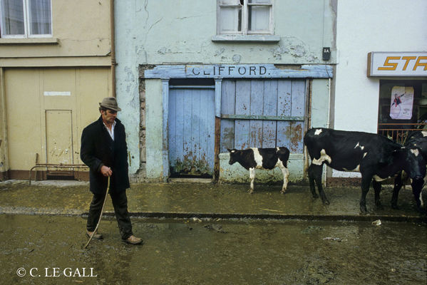exposition-irlande