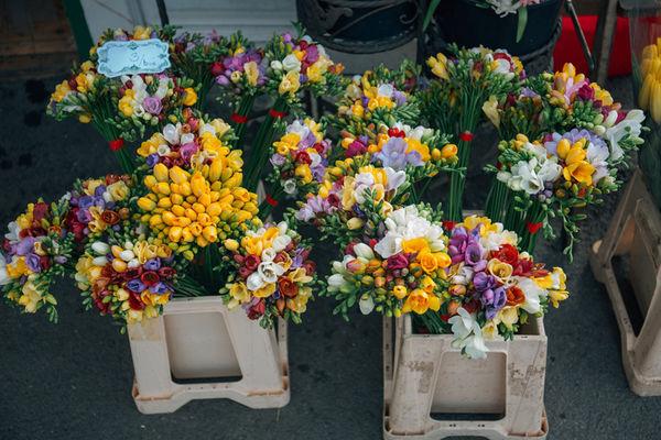 flowers-1245974_1280