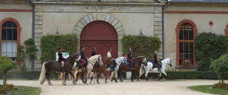 Haras-Hennebont-Morbihan-Bretagne-Sud