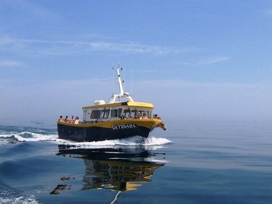 1 Balades et pêche en mer - Guilvinec - Pays Bigouden (4)