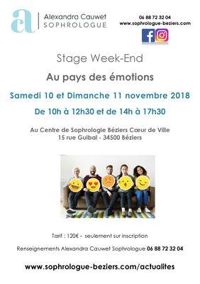 Stage Week-End 2 : Au Pays des Emotions