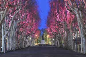 Allees_lumieres_2012_0