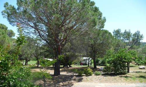 Camping Les Terrasses St Chinian - 3