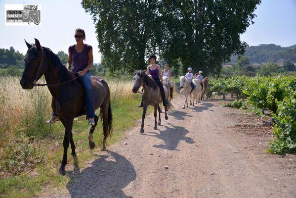 Centre-equestre-aneblanc-cessenon-5