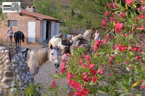 Centre-equestre-aneblanc-cessenon-1