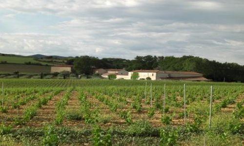 Château Coujan - Murviel les Béziers - 3