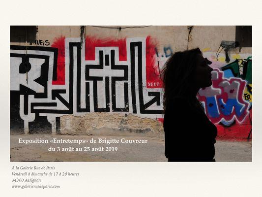 Expo-entretemps-Brigitte-Couvreur