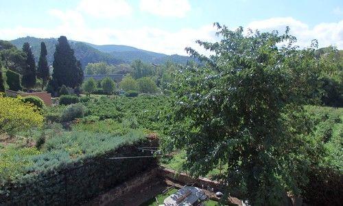 HLO-chambre d hote-Roquebrun-La vie en rose (6)