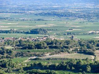 Domaine de la Senche - La Livinière - Minervois