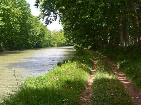 LE CANAL A VELO - QUARANTE - CAPESTANG