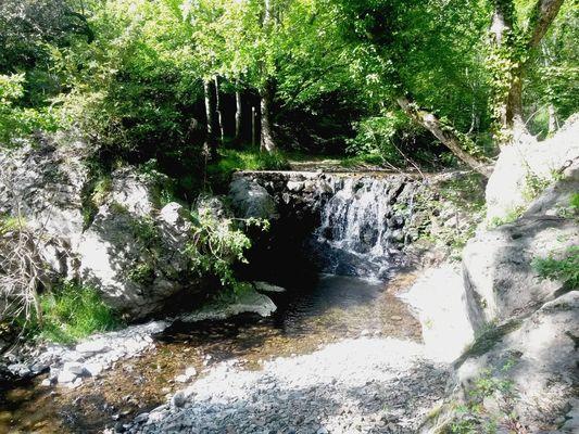 Le Devois-sous-bois-ruisseau
