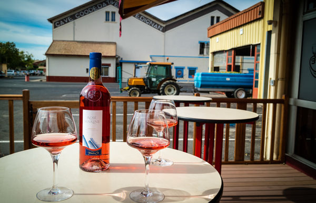Les vignerons de Sérignan-Sérignan_11