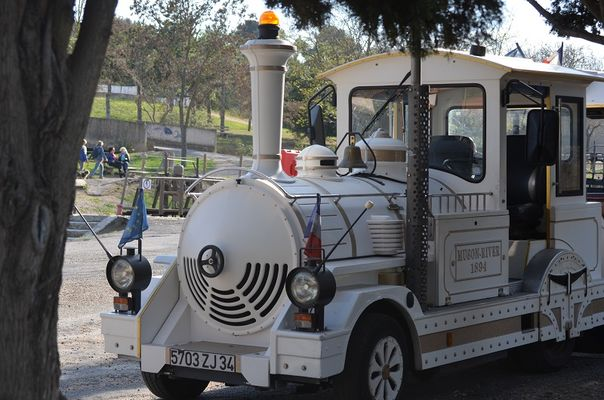 Photo 4 Petit Train Touristique Beziers