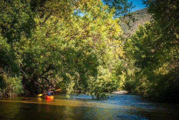 Reals Canoe Kayak-Cessenon sur Orb_7