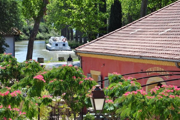 Vinauberge et canal du Midi