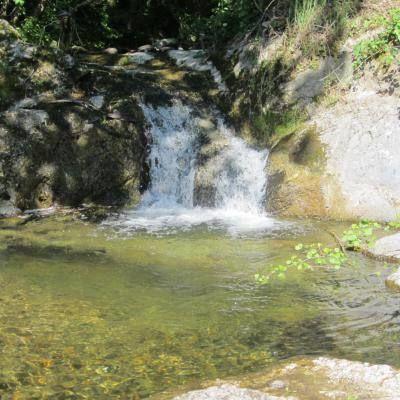 Le ruisseau proche du gîte