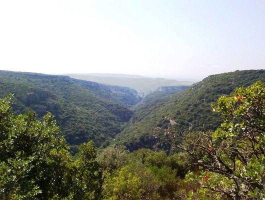 Vue du chemin reliant Vélieux à Minerve