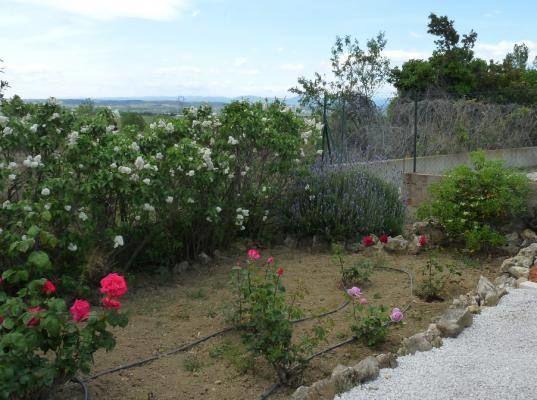 Le jardin fleuri vue sur la vallée