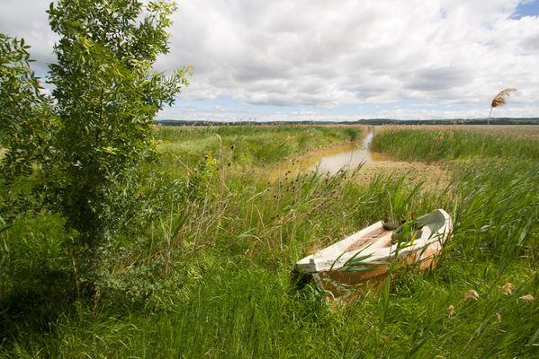 barge-etang