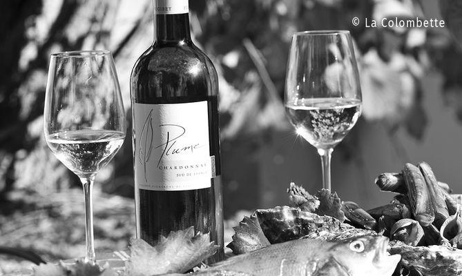 Des vins de soif et de partage