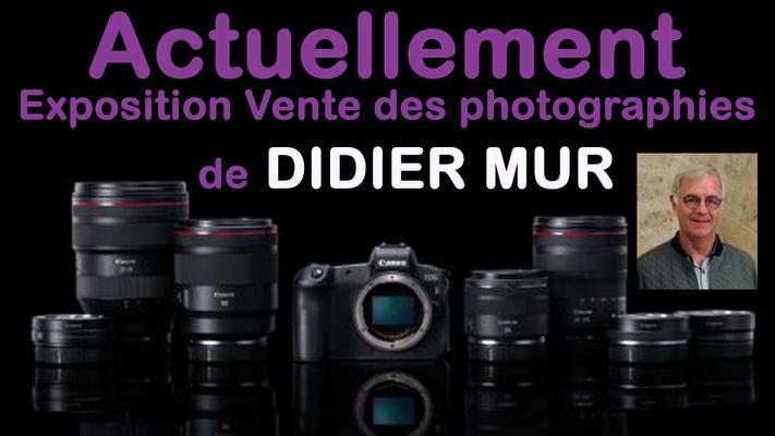 didier-mur
