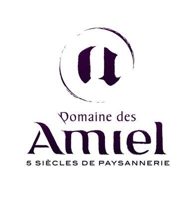domaine-des-amiels logo