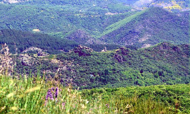 vue sur Neyran - Gilles Delerue