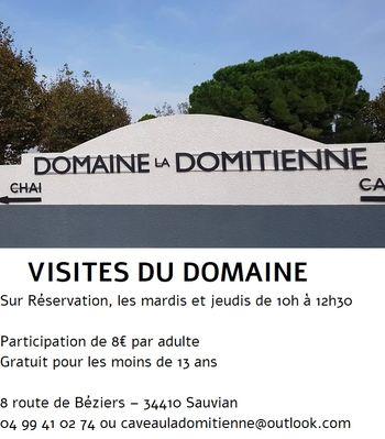 2019--ete-visites-caveau-la-domitienne-Sauvian