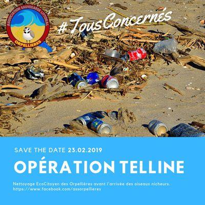 2019-02-23 opération nettoyage orpellières