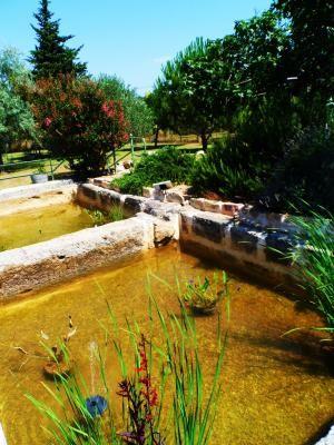 Les bassins de la Noria.