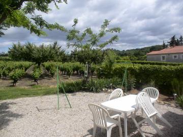 La terrasse avec vue sur le vignoble
