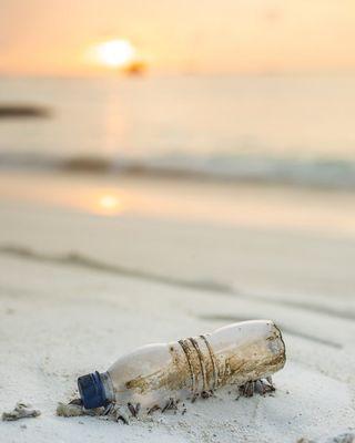 Nettoyage de plage ©seefromthesky