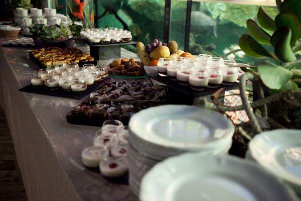Apéritif dînatoire - Location Salle - Grand Aquarium - Saint-Malo